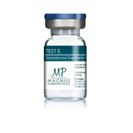 TEST E - Testosterone enanthate U.S.P. 250mg - Magnus