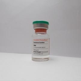 Testabol Enanthate British Dragon (250 mg/ml) 10 ml